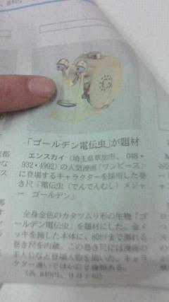 NEC_0611.JPG